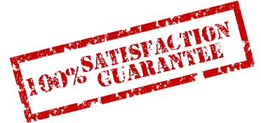 100-customer-satisfaction